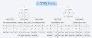 PMO Org View - Agile